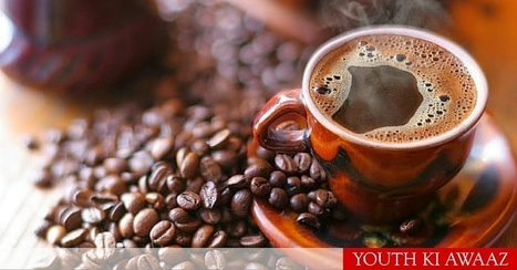 This Method Of Growing Coffee, Is Proving To Be A Blessing For River Cauvery | Amanvana Spa Coorg Resort | Scoop.it
