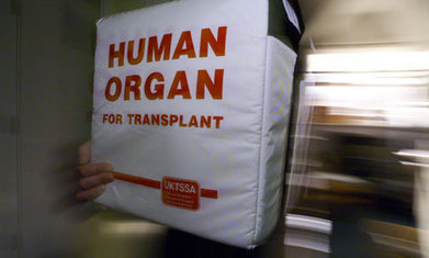 Organ donation   Society   The Guardian   Ethics and law of organ donation   Scoop.it