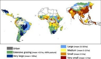 Smallholders are bigger than you imagine | Agricultural Biodiversity | Scoop.it