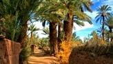 Best Moroccan Tourist Destinations   Adventure Trip Destinations in Morocco   Scoop.it