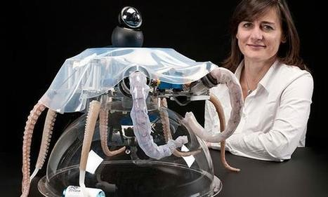 Robot Octopus Points the Way to Soft Robotics With Eight Wiggly Arms | Post-Sapiens, les êtres technologiques | Scoop.it