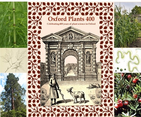 Plants in the News, October 30 2015: Oxford Plants 400 | Plant Science Today | Plant Biology Teaching Resources (Higher Education) | Scoop.it