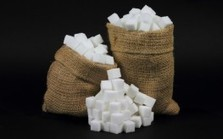 "Blocking Sugar Intake can Reduce Cancer Risk and Progression (sugar-free for long life"") 