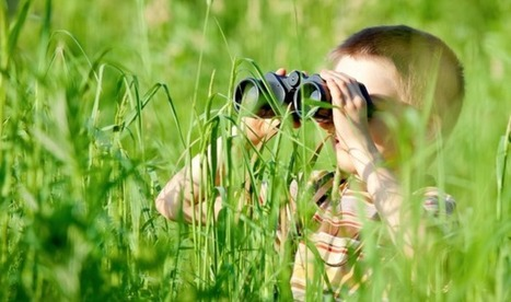 10 Awesome Outdoor Summer Learning Ideas | Purposeful Pedagogy | Scoop.it