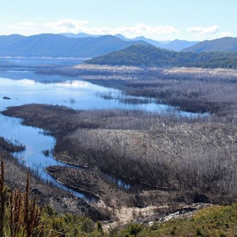 Tasmanian Opposition seeks 'transparency' on dam level data | Water Law | Scoop.it