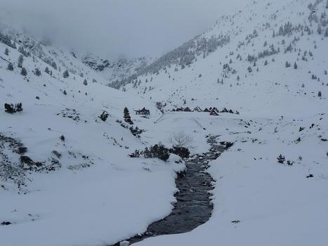 Vallée du Moudang. Isards et gypaète|Le blog de Michel BESSONE | Vallée d'Aure - Pyrénées | Scoop.it