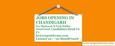 Jobs Opening In Chandigarh | Telecom Company in Chandigarh | Scoop.it
