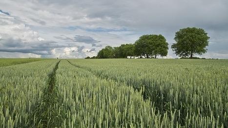 Le foncier agricole, un atout stratégique à protéger - EconomieMatin | Agriculture en Dordogne | Scoop.it