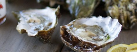 Buy Fresh Sustainable Seafood Online - i love blue sea | Dreaming of Sushi | Scoop.it