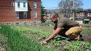 Farming grows Baltimore's quality of life | Vertical Farm - Food Factory | Scoop.it