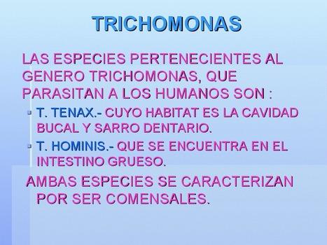 T. vaginalis | Trichomonas vaginalis : Parásito número uno de transmisión sexual | Scoop.it