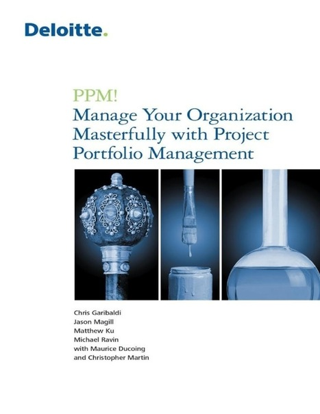 Review: PPM! Manage Your Organization Masterfully with Project Portfolio Management | Yellowhouse Portfolio Management | Scoop.it