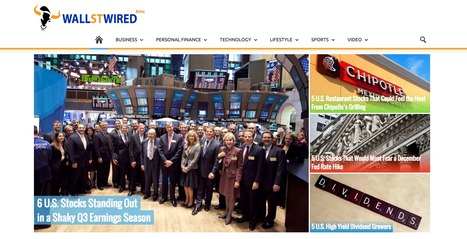 WallStWired | Wall Street To Main Street | Showcase of custom topics | Scoop.it