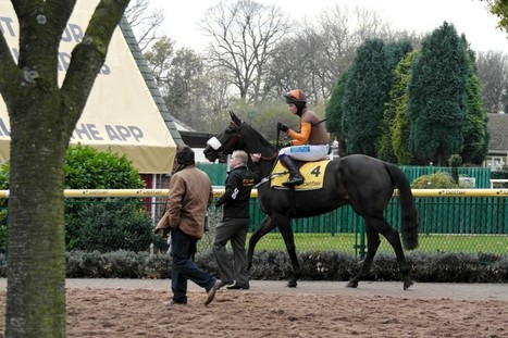 Aintree The Long Term Aim For Long Run | Grand National | Scoop.it