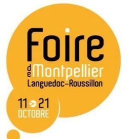 Montpellier sous le signe du jeu vidéo | Le jeu vidéo en bibliothèques publiques | Scoop.it