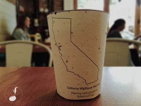 Plantable Coffee Cups Embedded With Seeds Grow Into Trees When Thrown Away | Common technically random thoughts | Scoop.it