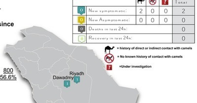 Avian Flu Diary: Saudi MOH Announces 2 New Primary MERS Cases | MERS-CoV | Scoop.it