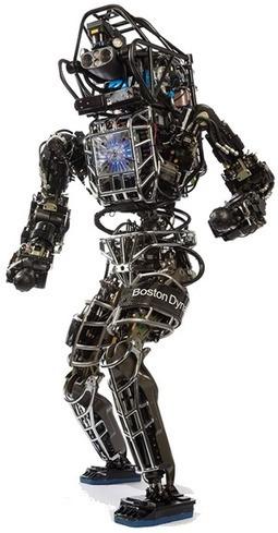 Atlas: An Agile Anthropomorphic Robot – is Skynet real? | Blog | Scoop.it
