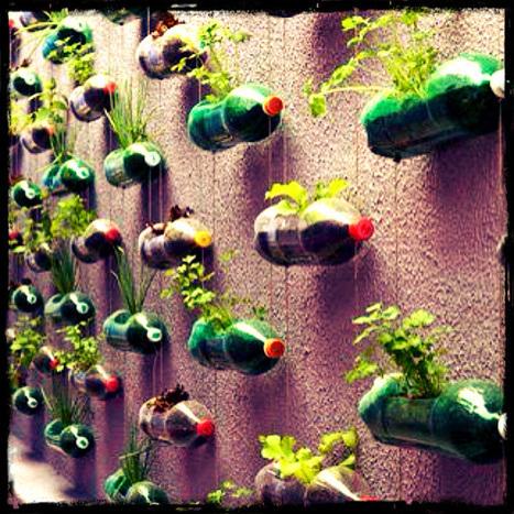 The Different DIY Vertical Garden | Gardener's Life | Scoop.it