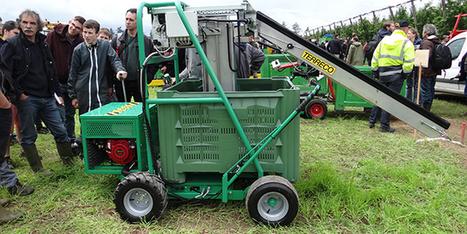 Une machine d'aide à la cueillette automatisée chez Terreco | Arboriculture: quoi de neuf? | Scoop.it
