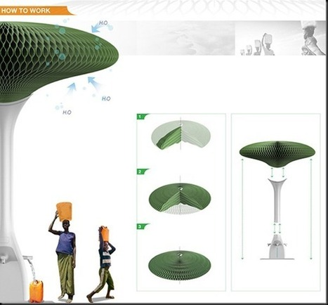 » Concept Tree – Fresh Water Collector Future technology | Tech The Future | Scoop.it