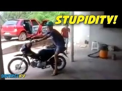 The Stupidity Of The Human Race | supreme moments | Scoop.it