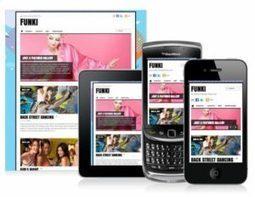 Themify Funki Demo - Funky Responsive WordPress Theme | WordPress Themes Review | Scoop.it