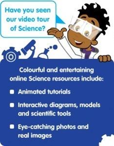 KS1 and KS2 Science Activities| EducationCity UK | EducationCity UK | EW staff | Scoop.it