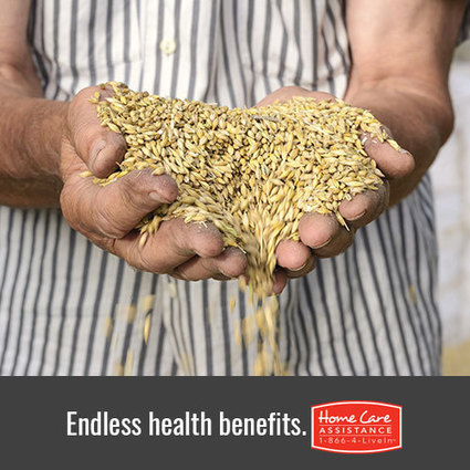 Role of Fiber in Senior Health and Wellness | Home Care Assistance of Oklahoma | Scoop.it