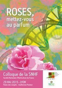 Roses, mettez-vous au parfum (69) - SNHF - Société Nationale d'Horticulture de France | HORTICULTURE BOTANIQUE | Scoop.it