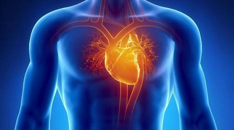 Stem Cell and Organ-On-A-Chip Technology Used To Grow Heart Tissue ... - Medical Daily | Genetics Genomes Stem Cells Research | Scoop.it