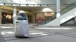 Le robot de surveillance | Grenoble | Technologie et Sécurite : Equipe 04 | Scoop.it