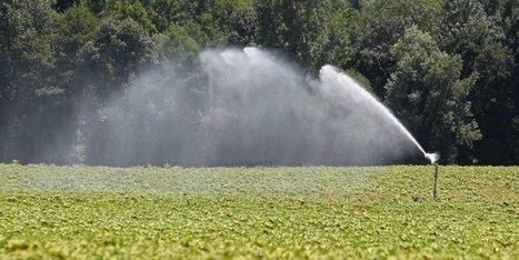 Les premières restrictions de pompage de l'été en Dordogne | Agriculture en Dordogne | Scoop.it