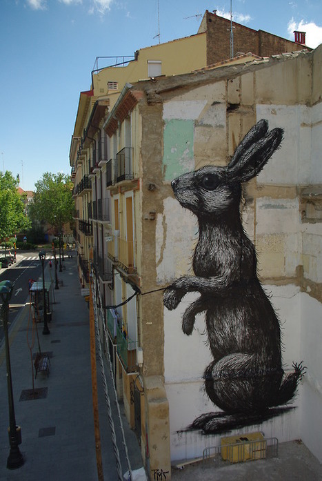 Roa | Street Artist | les Artistes du Web | Scoop.it