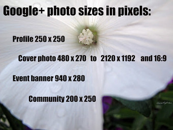 New cover photo: How to edit your photos right here on the GooglePlus side! | GooglePlus Expertise | Scoop.it