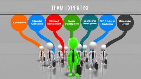 Website Development : Team Expertise of Evince Development Pvt.Ltd | eCommerce Websites, Software Development Company | Scoop.it