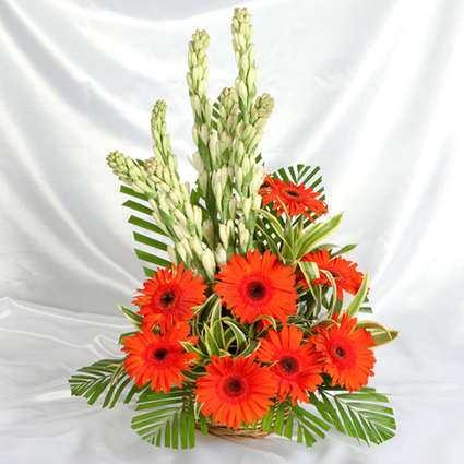 Gerbera and  Gladiolus - Blossom Square | BlossomSquare online flowers delivery system | Scoop.it