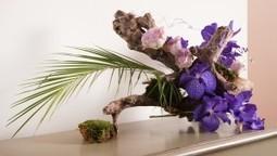 Art Home Naturel' | Art Home Naturel' est une entreprise de création florale. Je crée des compositions artistiques en scrap floral et aussi des bouquets de fleurs pour toutes les occasions. J'anime... | Mes évênements | Scoop.it