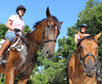 New equestrian park offers new option - Tampa Bay Newspapers   Dressage   Scoop.it