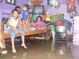 बारिश का कहर, घरों में घुटनों तक भरा पानी | Latest News | Scoop.it