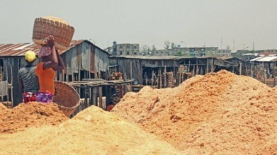 Nigeria: Innovative sawdust recycling creates jobs while cleaning up city   UNDP   Shifting Waste   Scoop.it