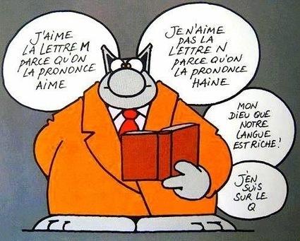 Surprenante langue française...   Videos courtes Homeroom PSHE   Scoop.it