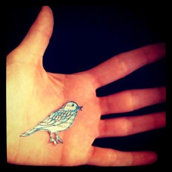 En todos lados   Recuerdos, memoria y pájaros   Scoop.it