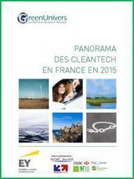 [Exclusif] Panorama des cleantech en France en 2015 | Smart Grids | Scoop.it