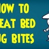 Animal Repellents and DIY Pest Control Solutions