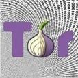 Comment anonymiser tout ce que vous faites en ligne - Techniques de l'Ingénieur | Geek 2015 | Scoop.it