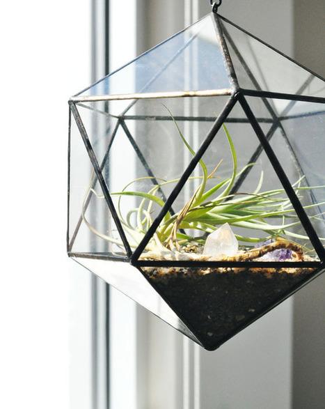 { Today I ♥ } Les terrariums… | décoration & déco | Scoop.it
