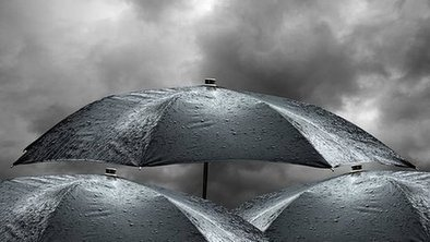 Smart umbrellas 'collect rain data' | WindGatherer - weathering the data deluge | Scoop.it