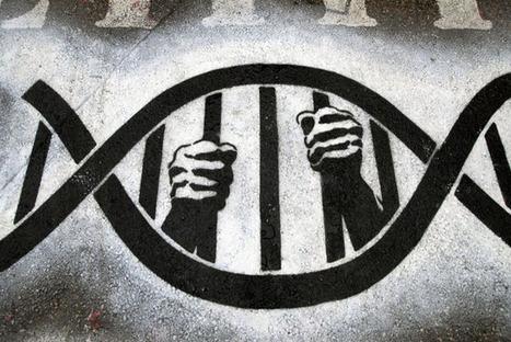 CNA: Deriva Genética: Vamos hacia un más que posible Desastre Global creado en los Laboratorios | La R-Evolución de ARMAK | Scoop.it