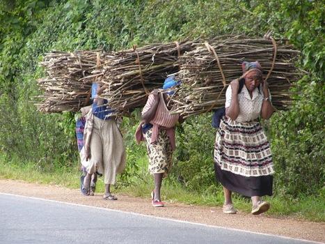LEADERSHIP: Le pouvoir des femmes africaines   Brigitte André   Scoop.it